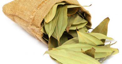 magical-bay-leaves